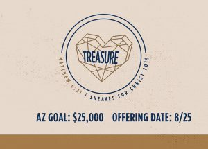 SFC Treasure Arizona Goal